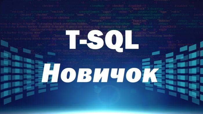 Видеокурс по T-SQL. Путь программиста от новичка к профессионалу. Уровень 1 – Новичок